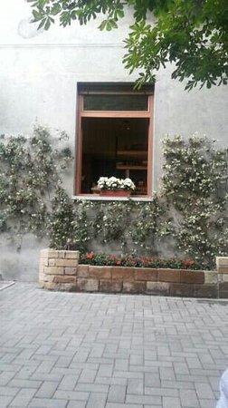 La Sosta : finestra
