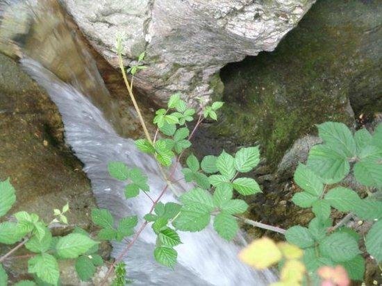 Orrido di Bellano : cascata