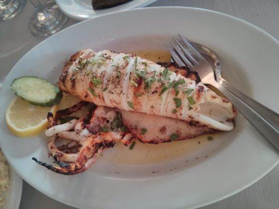 Marina Seafood : calamari