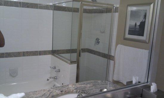 Vancouver Marriott Pinnacle Downtown Hotel: Bathroom