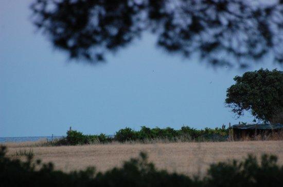 Centro Vacanze La Risacca: Vista mare da un punto del villaggio