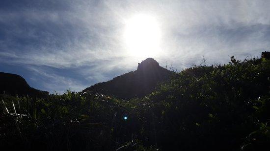 Praia do Coqueirinho: a trilha