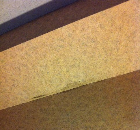 Days Inn - Toronto East Lakeview : Mold above my bed
