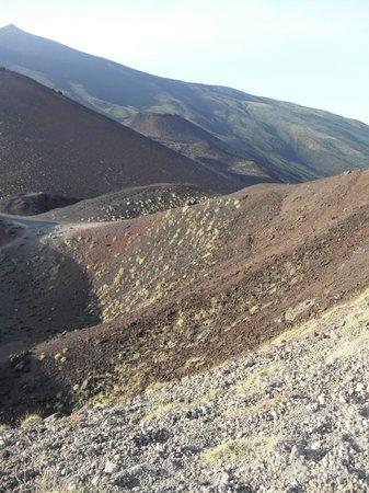Etna Sicily Touring: Dettaglio cratere silvestre