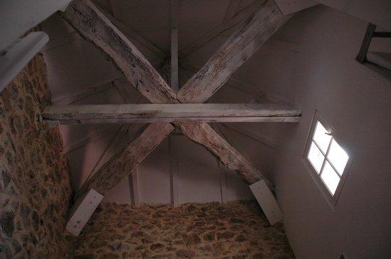 Le Relais Des Chartreuses : Bathroom ceiling in Le Pigonier