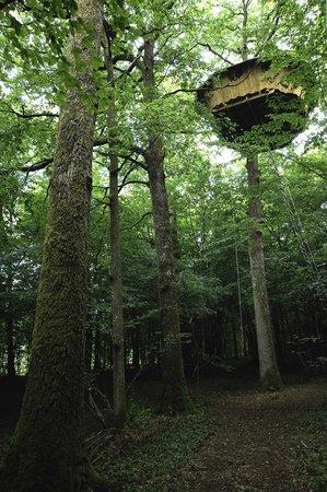 La cabane duplex la vue sur la chambre picture of les cabanes du bois lan - Les cabanes du trappeur ...