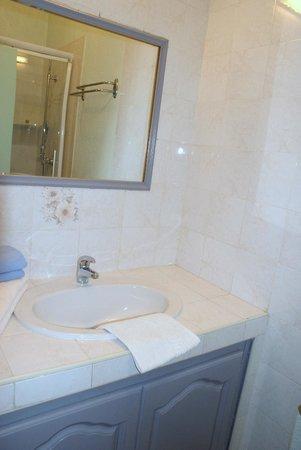 Hotel Le Dauphin Bleu : bagno stanza n.14