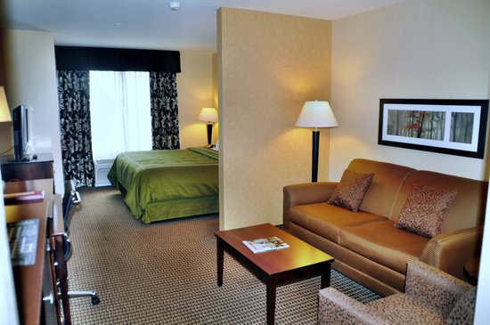 Comfort Suites Hotel & Convention Center Rapid City: unser Zimmer