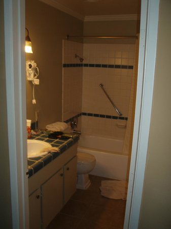 Forest Suites Resort at Heavenly Village: master bathroom