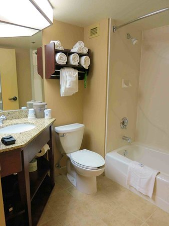 Hampton Inn Seattle/Southcenter: Room 200 bathroom - rather small