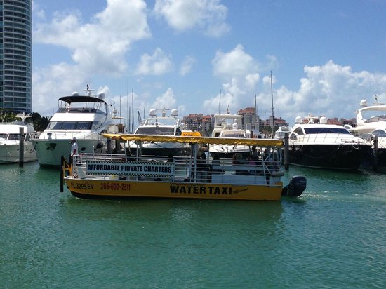Water Taxi Miami: Water taxi holds up to 38 passengers, sitting low in the water creating a connection with the wa
