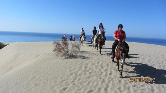 Kirca Travel- Patara Horseriding