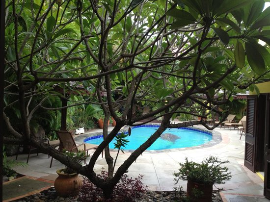 """The Ginger Lily Hotel: """"The Pool Area of the Hotel""""!"""