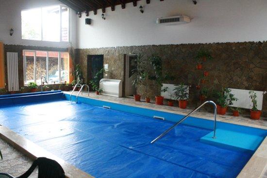 Pensiunea Mario: Inside Swimming pool. In the corner: door to the sauna
