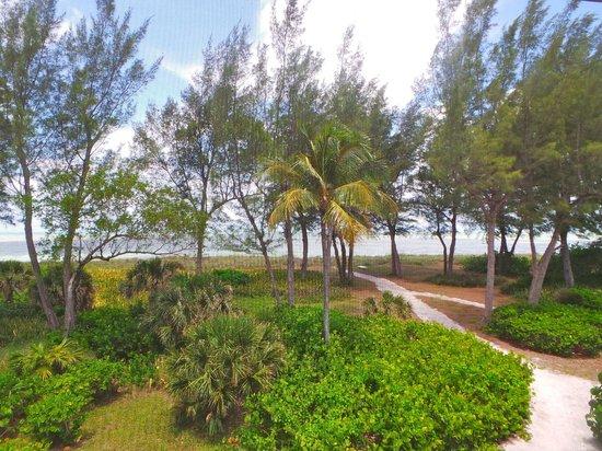South Seas Island Resort: 50 yard walk to beach