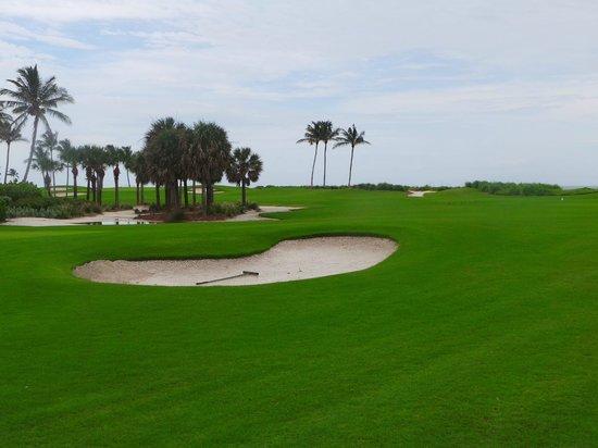 South Seas Island Resort: golf course