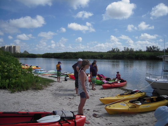 Siesta Key Bike and Kayak : Seeing the ocean side of Siesta Key