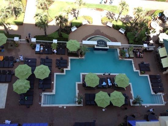 Ocean Beach Club: amazing pools