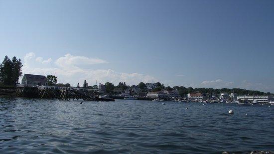 Balmy Days Cruises: Harbor