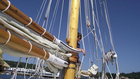 Balmy Days Cruises: The boat