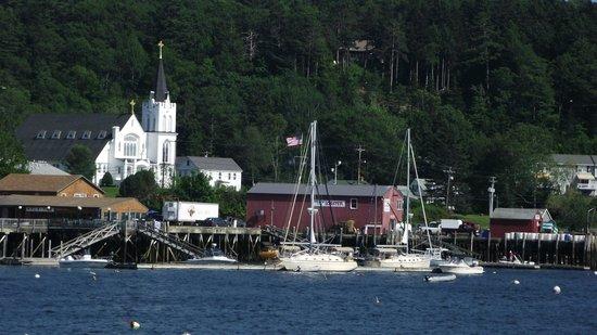 Balmy Days Cruises: Habor