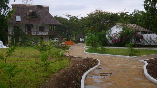 Changani Beach Cottages : Our Premises