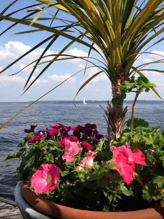 Beacon Shore Bed & Breakfast: A view from the dock