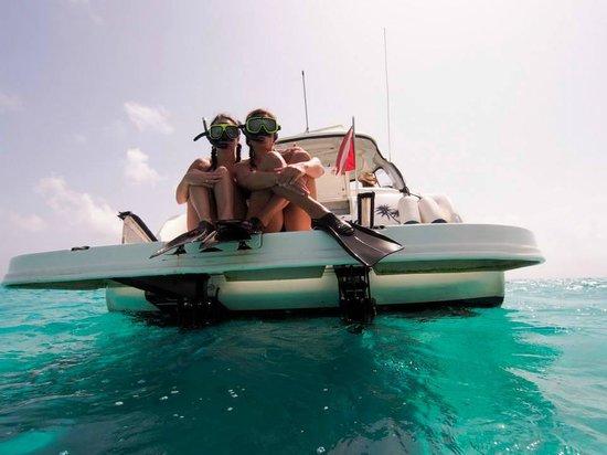 Cayman Luxury Charters Ltd.: snorkle