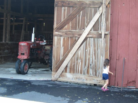 Country Log House Farm Bed and Breakfast: Opening the big barn door.