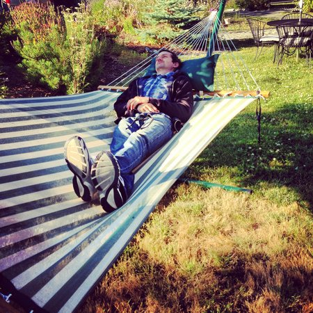Blue Goose Inn Bed and Breakfast: Enjoying a nap in the hammock on the property