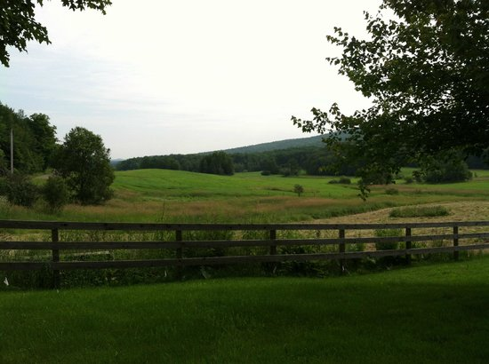 Inn At Buck Hollow Farm : view from the front yard