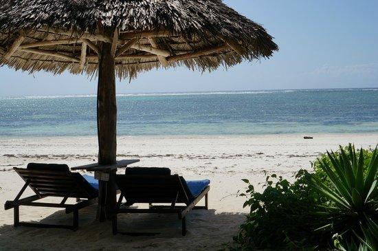 Anna of Zanzibar: Beach