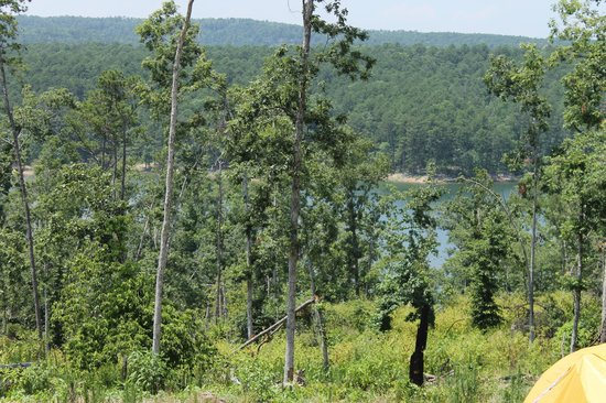 Lake Ouachita State Park Campground: View of the lake from the campground B