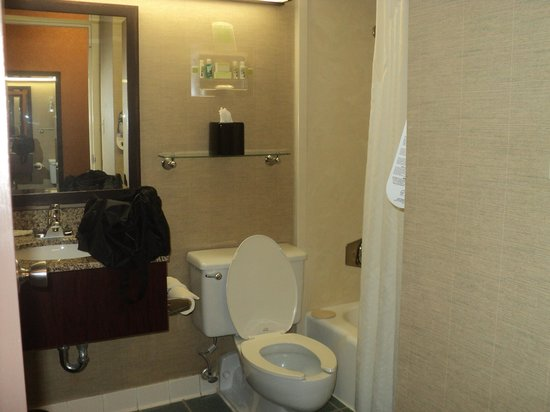 Holiday Inn Strongsville: No Counter Space in the small bathroom.
