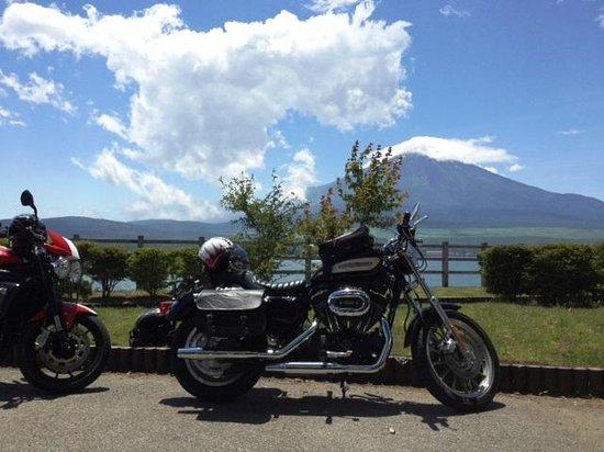Fuji Five Lakes: 山名湖からの富士山