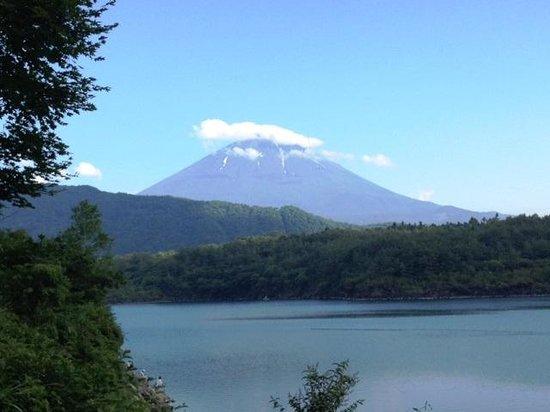 Fuji Five Lakes: 西湖からの富士山