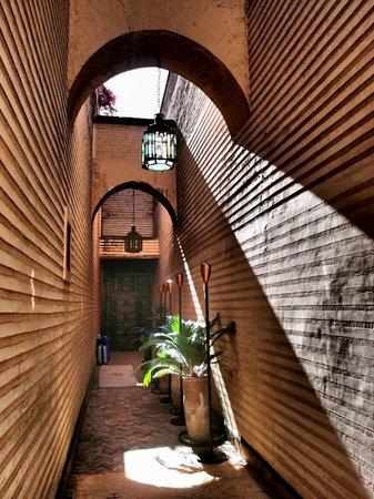 Riad Enija: looking down the rabbit hole, definitely follow this path!