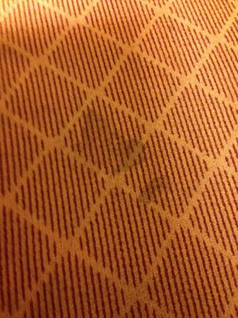 Residence Inn Provo : Pet stained carpet throughout the room