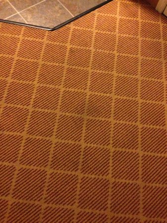 Residence Inn Provo : Stained carpet throughout the room