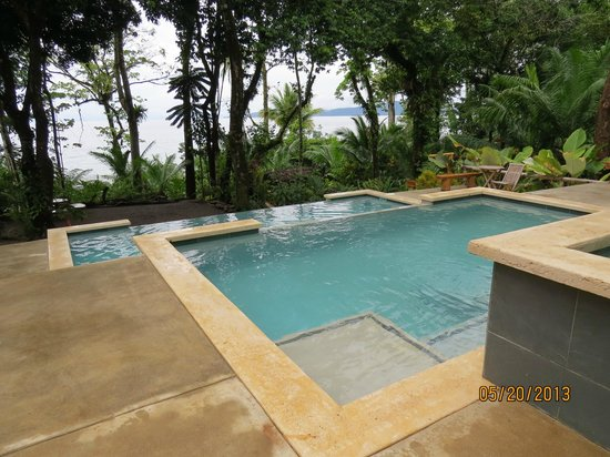 Copa de Arbol Beach and Rainforest Resort : Pool