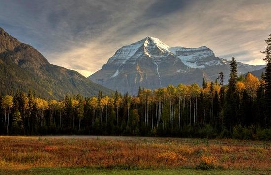 British Columbia Visitor Centre @ Mt Robson: Fall at Mount Robson Provincial Park