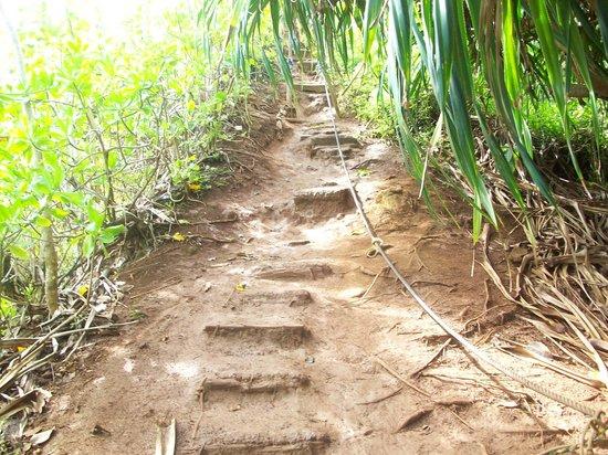 Pali Ke Kua Beach (Hideaway s Beach): World's worst staircase