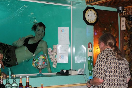 O'Haire Inn: Feeding the mermaid money