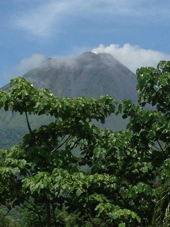 Arenal Manoa Hotel: View from the hot springs pool