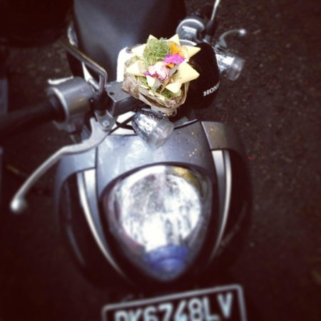 Soulshine Bali: Offerings were even left on my scooter. Blessed.