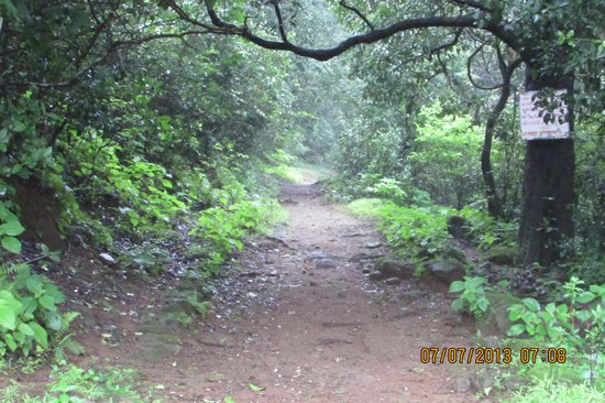 Rajmachi, India: way to Shreevardhan fort