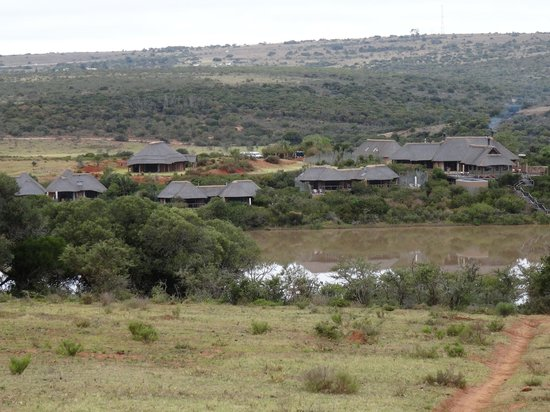 Pumba Private Game Reserve: The water lodge and guest rooms.