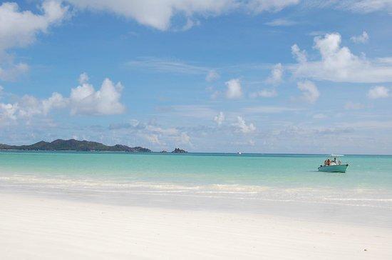 Acajou Beach Resort: Spiaggia di fronte all'hotel
