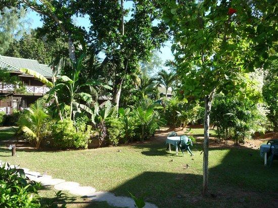 Acajou Beach Resort: Vista dal ristorante