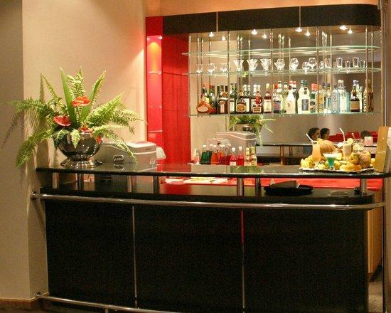 Tana Hotel : lounge bar